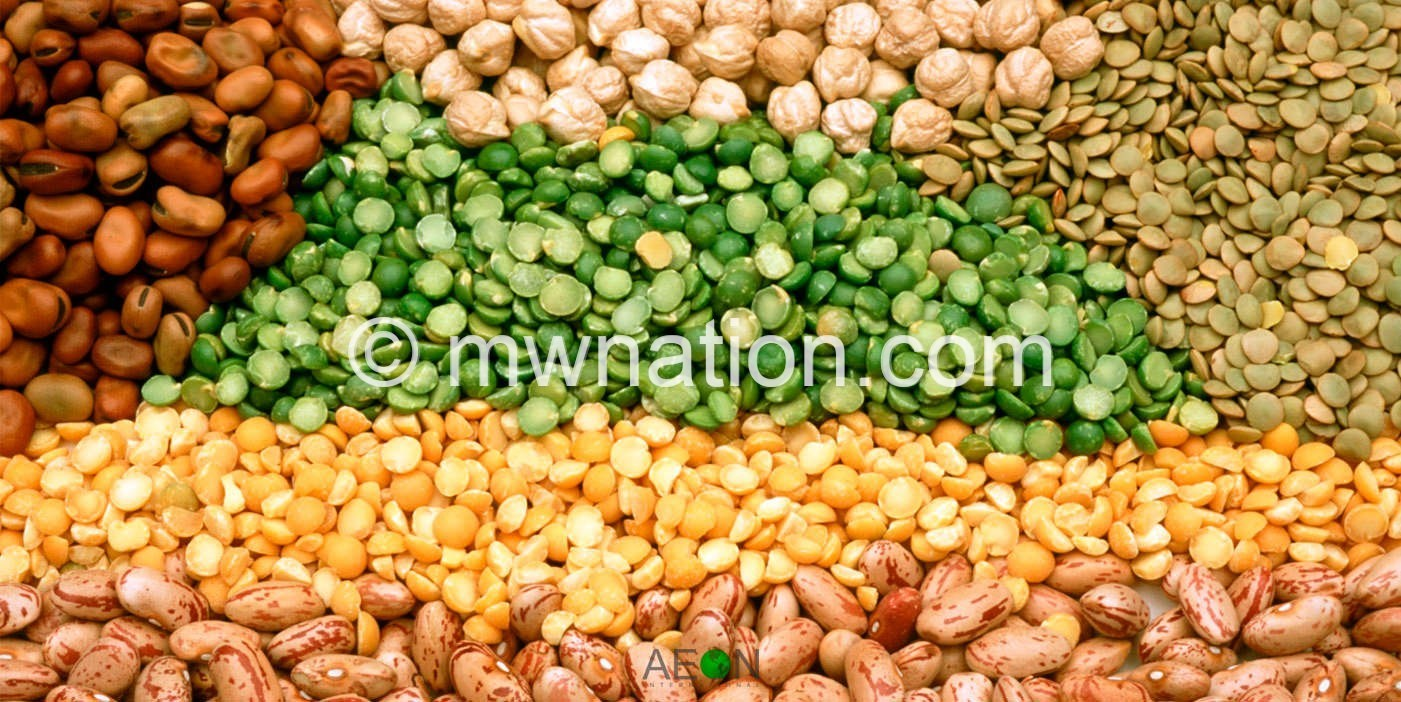 seeds | The Nation Online