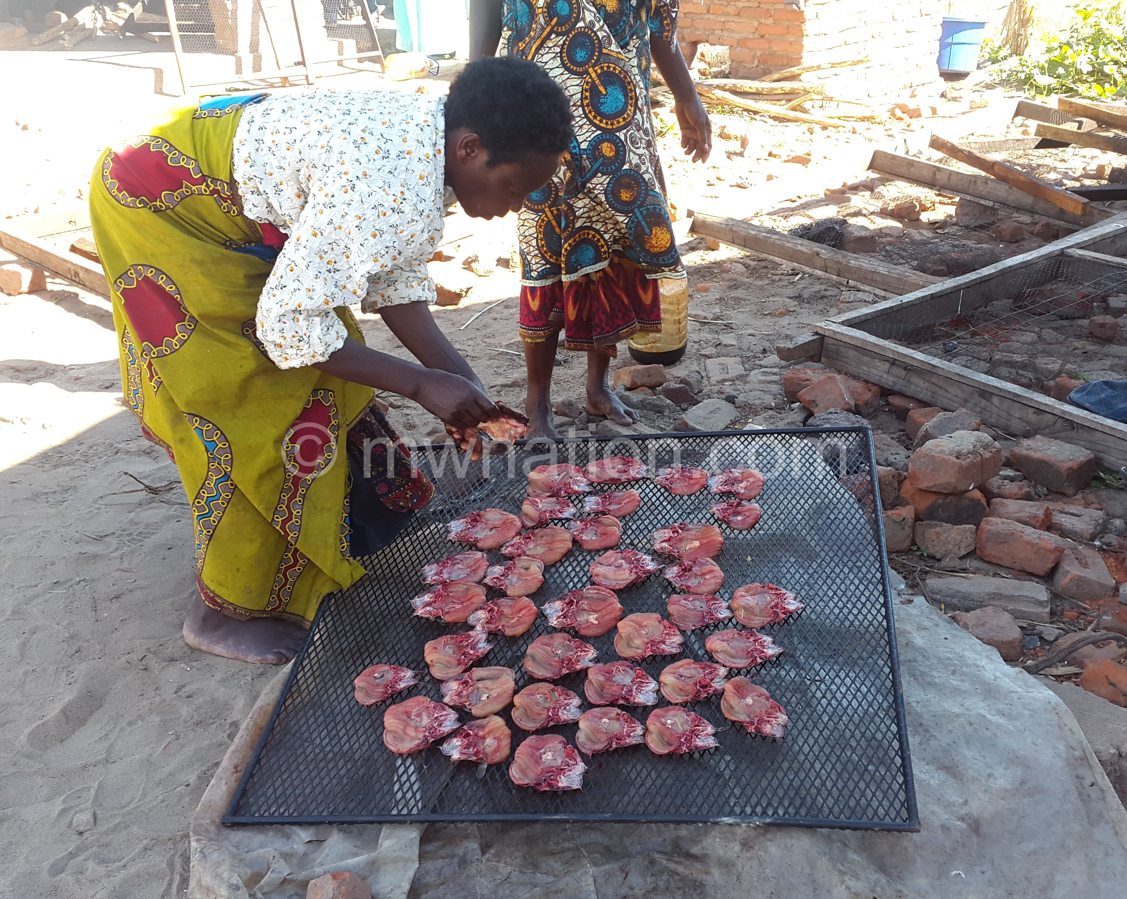 Kamata preparing the fish for smoking | The Nation Online