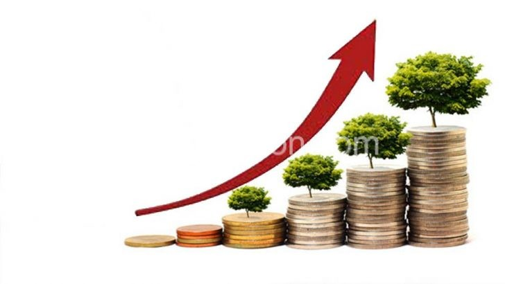 economic growth e1493802939921 | The Nation Online