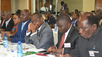 PAC, govt tout progress after conference
