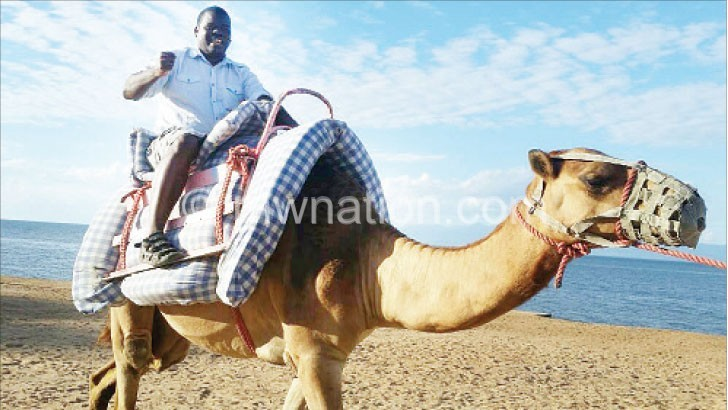 camels james | The Nation Online