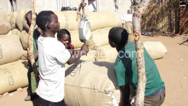 Cotton farmers | The Nation Online