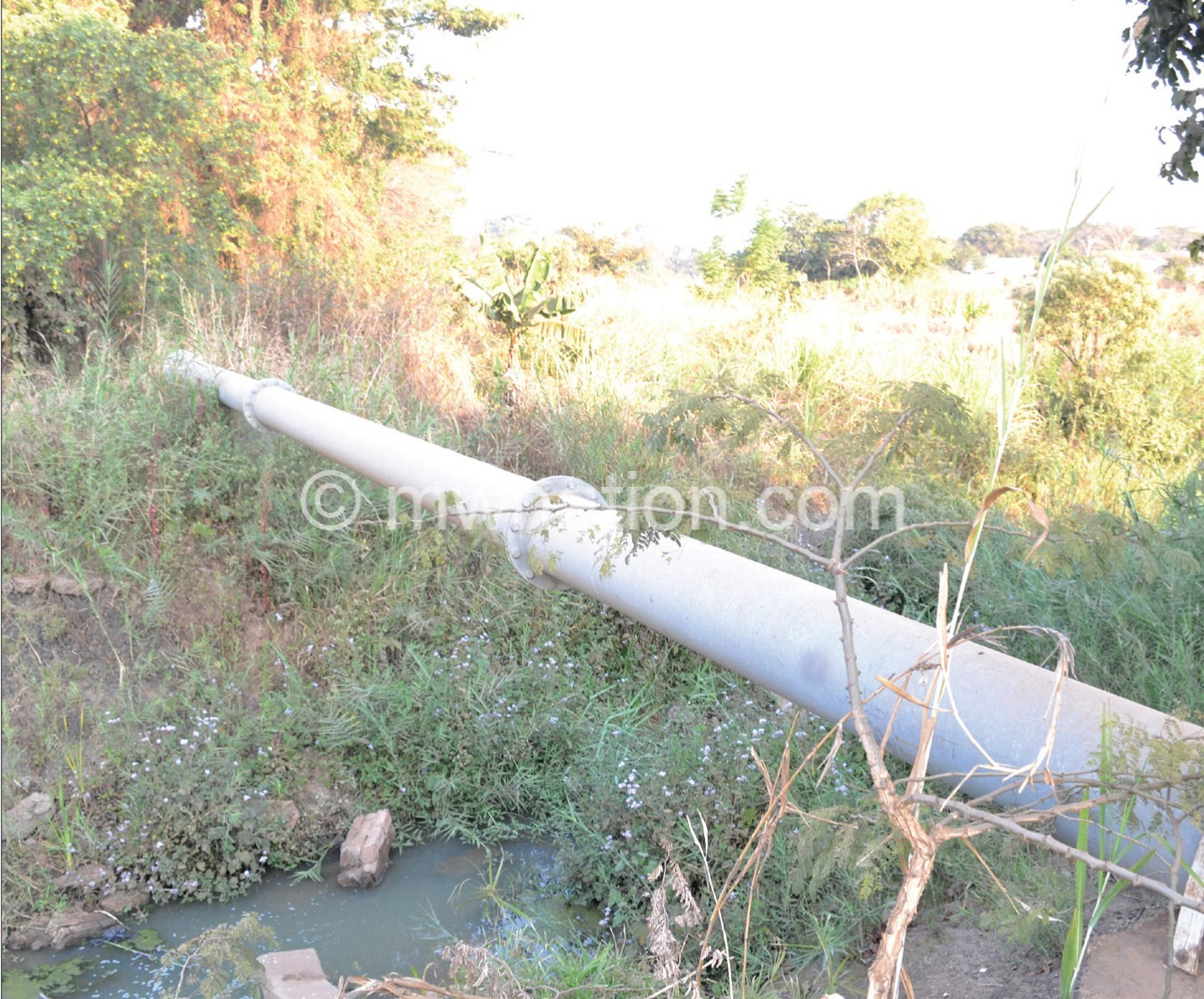 Area 18 sewer water | The Nation Online