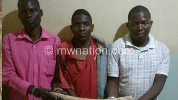 3 arrested for possessing ivory