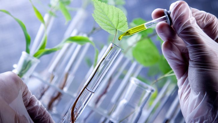 Farmers to embrace biotechnology