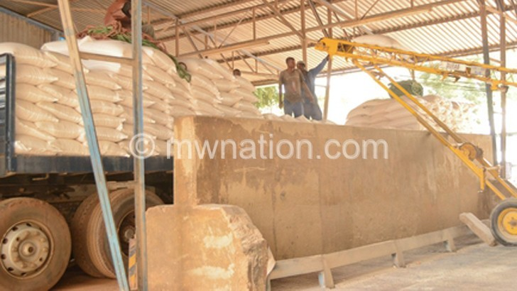 Illegal maize exports up 76% amid export ban