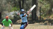 Cricket teams secure sponsors
