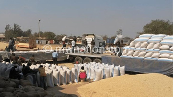 Farmers protest maize export ban