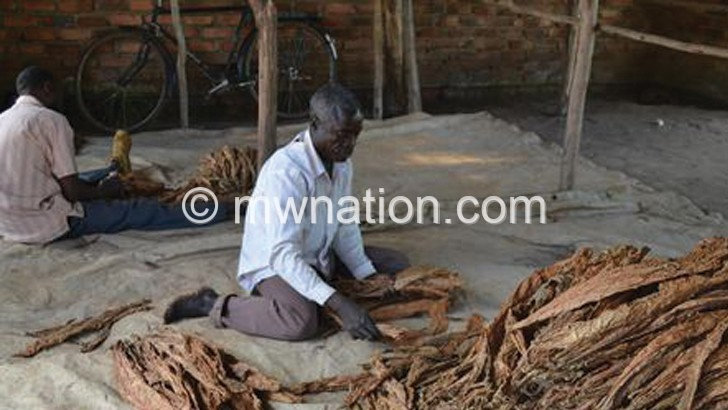 Ministry advises tobacco growers to form cooperatives