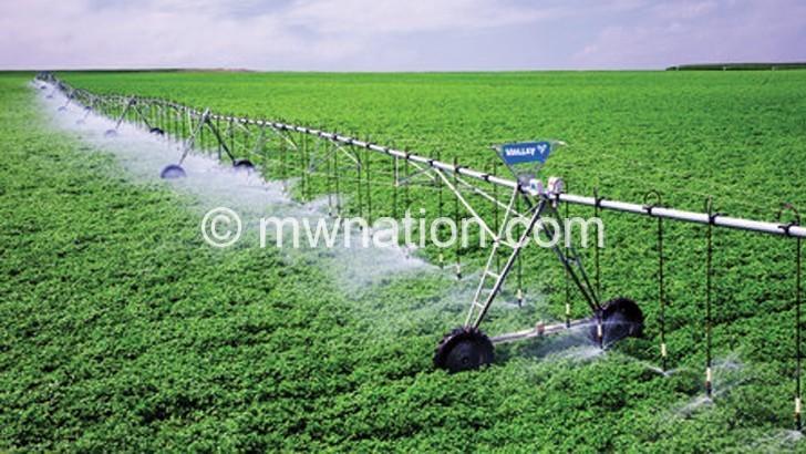 'Malawi should focus on irrigation farming'
