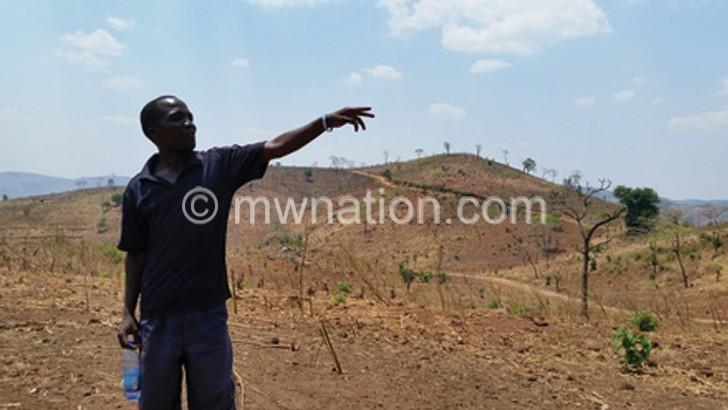 deforestation | The Nation Online