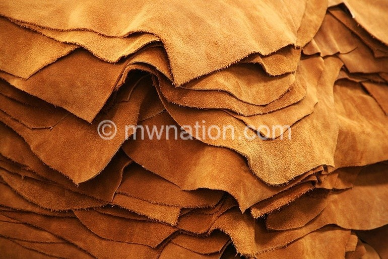leather lead | The Nation Online