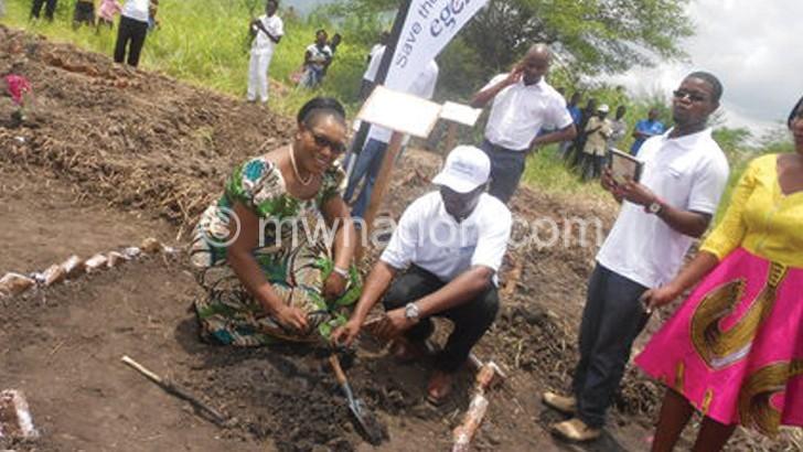 Egenco to plant 16 000  trees along Shire River