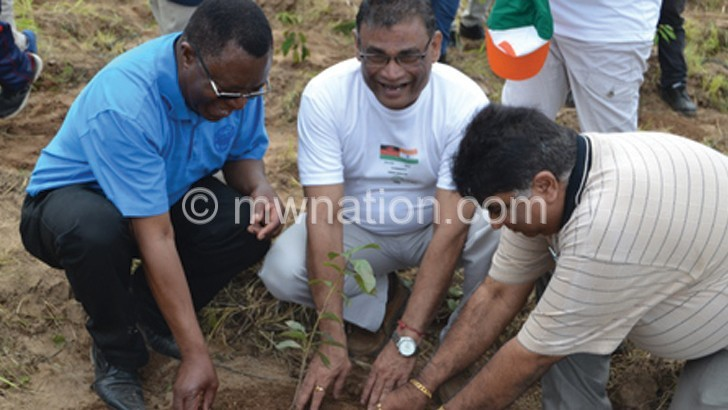 Indian community plants trees at Mudi catchment area