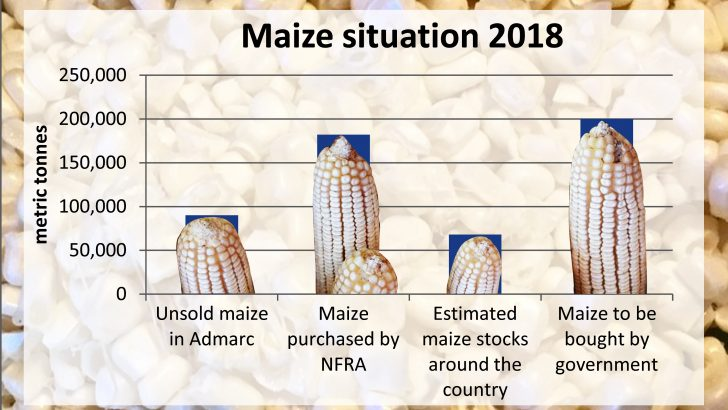 Govt says there is no hunger,  plans to buy more maize
