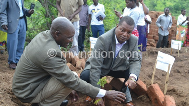 BT District to plant  30 million trees—DC