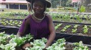 Malumbo's miraculous rise