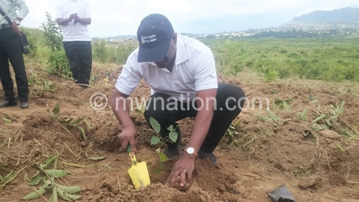 ACB says corruption worsens deforestation