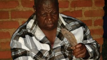 Kukuza ziwalo kwabooka