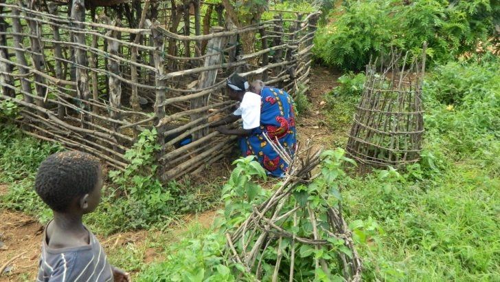 Communities empowered through savings, farming