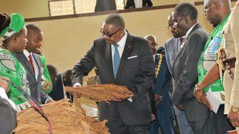 'Lingalirani bwino musanathane ndi fodya'