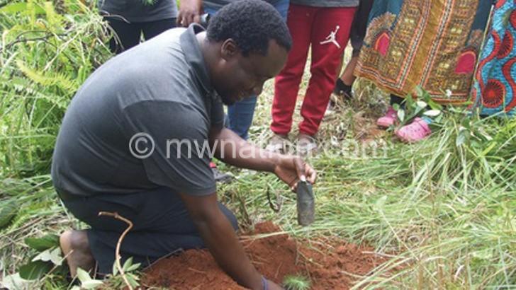 Temwa plants 200 000 trees in NB