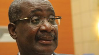 Committee seeks autonomy for parastatals
