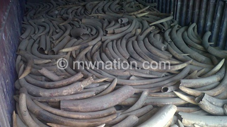 Businessperson fined K22m for ivory