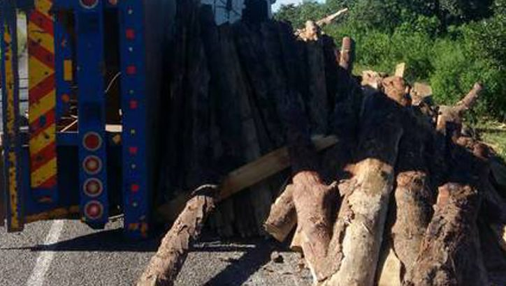 K750 000 for causing death in Mzimba