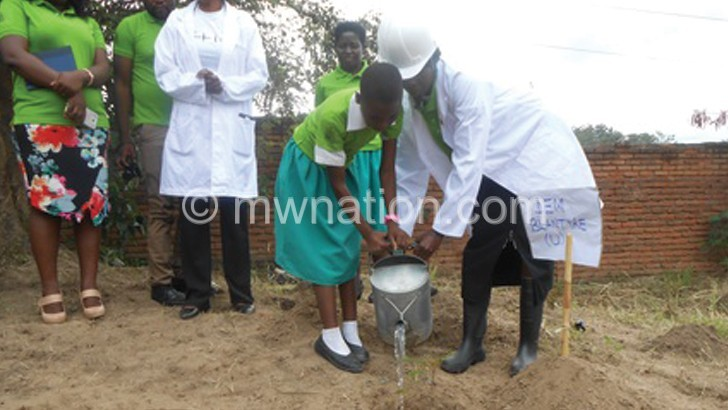 Blantyre primary schools in tree planting exercise