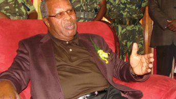 Muluzi recalls fight for democracy