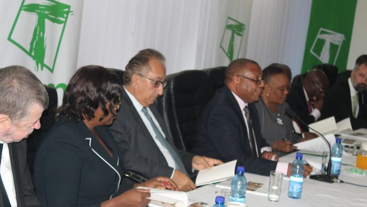 Economy spurred our growth—TNM plc