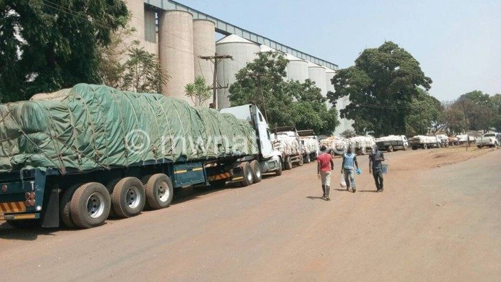 maize trucks | The Nation Online