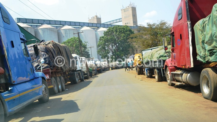 Find maize, govt dared