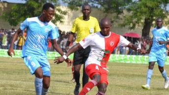 Silver peg striker Katinji at K13.5m