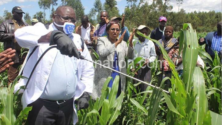 Malawi, Sadc face bleak food security outlook