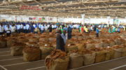 TC sensitising growers to new Tobacco Act