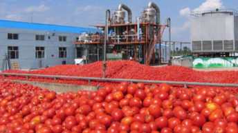 'Agro-industrialisation could