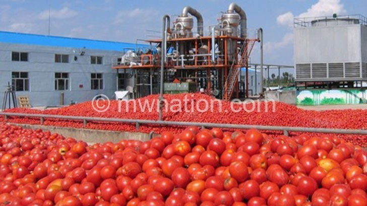 tomato | The Nation Online