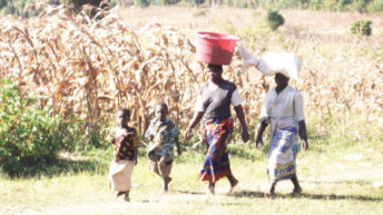 Women struggle for land rights
