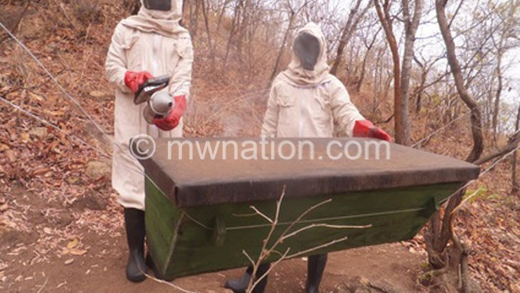 BEE FARMERS | The Nation Online