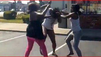 When women unleash  violence towards each other