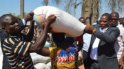 30 000 families to receive relief maize in Salima