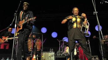 Tuku: A Malawi feel