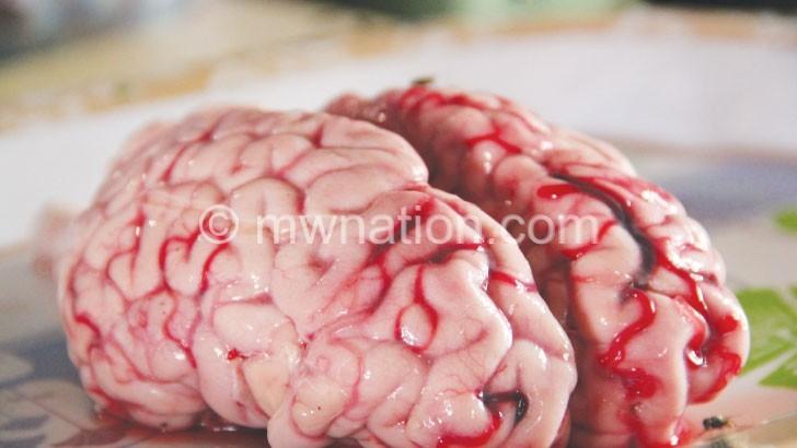 brain | The Nation Online