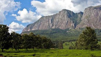 Mulanje district to plant 1.8m trees