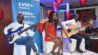 DStv launches Bachelor SA