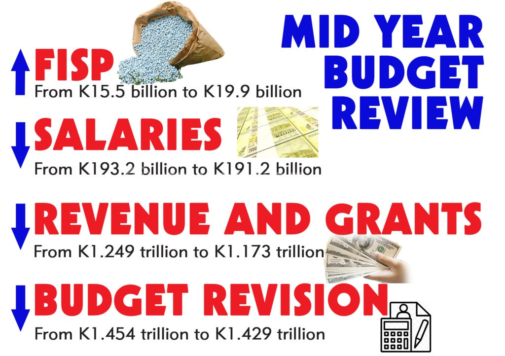 2019 mid year budget review | The Nation Online