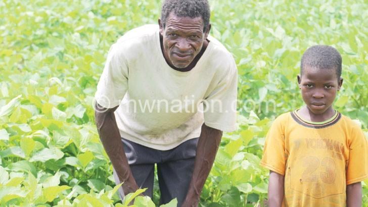Unlocking profitable soya beans