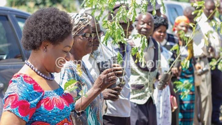 EthCo plants 2 000  trees in Nkhotakota